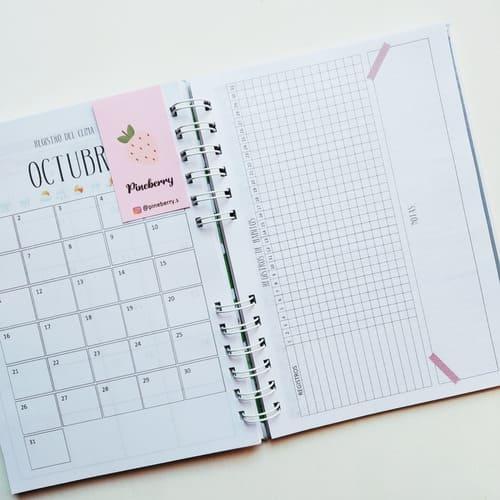 Comprar Agendas Organizadoras