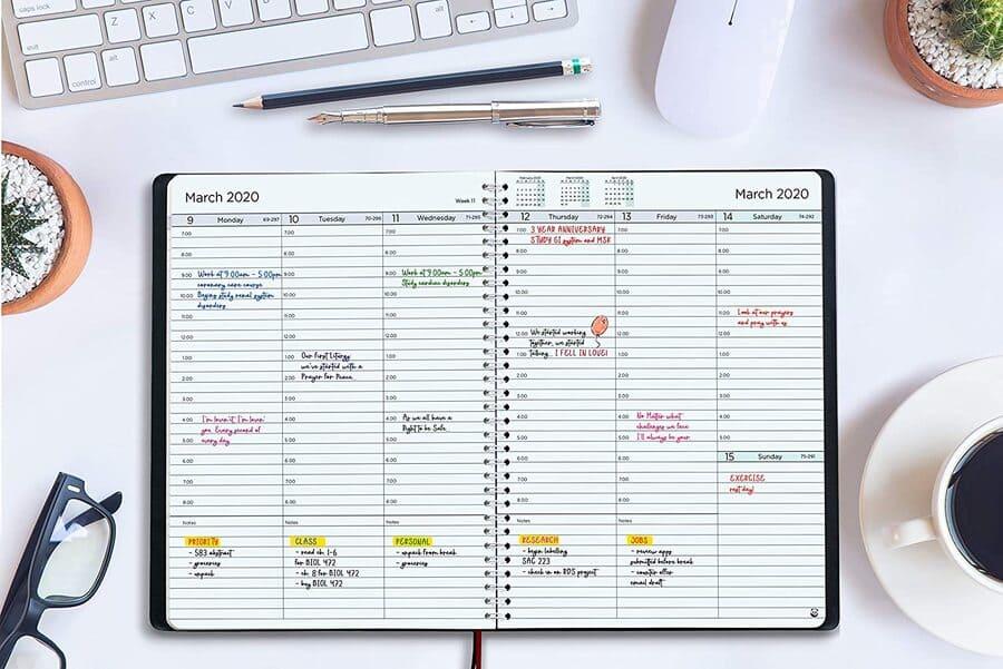 agendas semana vista